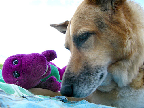 Jerry says final goodbye to Barney.