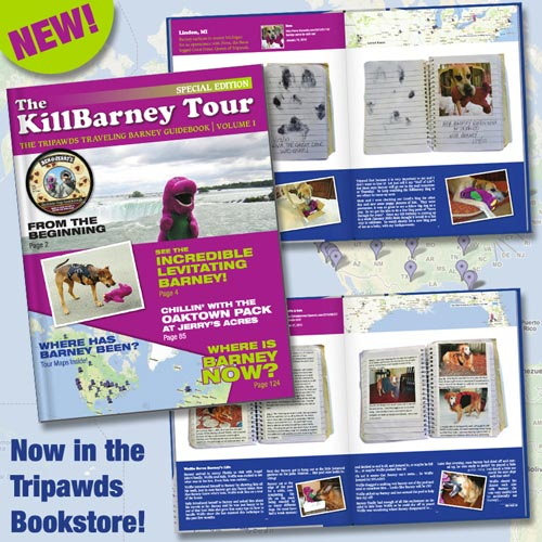 KillBarney Tour Book Vol. 1
