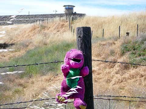 KillBarney Tour Takes Barney To Folsom Prison