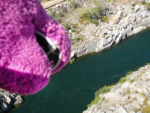 Barney Overlooks Nimbus Dam